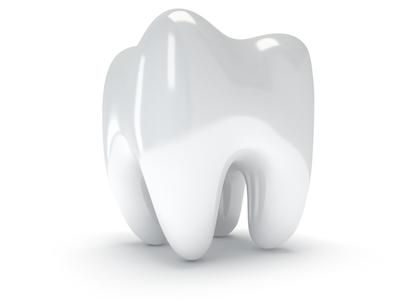 Drawing of Tooth | Coffs Harbour Dentist